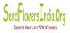 SendFlowersIndia.org logo