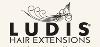 Ludis Charming Instinct logo